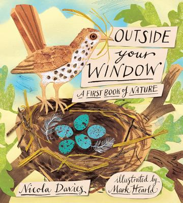 Outside Your Window By Davies, Nicola/ Hearld, Mark (ILT)